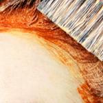Чем отмыть с кожи краску для волос (12 проверенных способов)