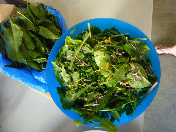 Салат из трав